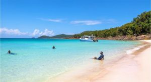 Accountant Listing Partner Accommodation Whitsundays