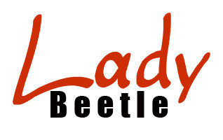 Lady Beetle Business Solutions - Accountant Find